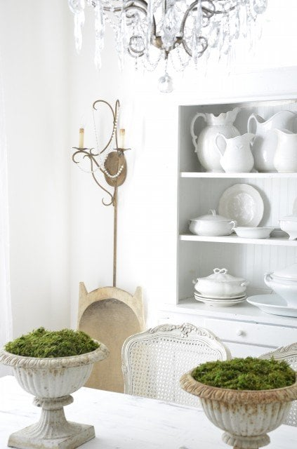 decorating-your-interior-with-moss- shelterness