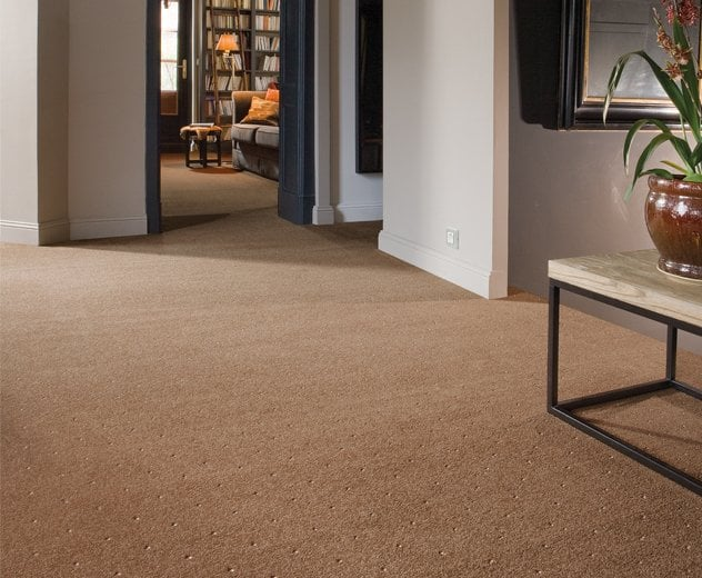 Patterned Carpets Picking A Pattern To Compliment Rooms Decor Decorated Life