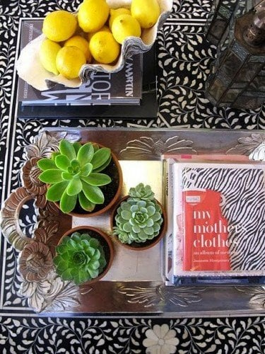 decorative tray with cactus and books