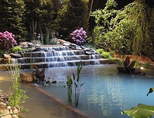 natural pool design
