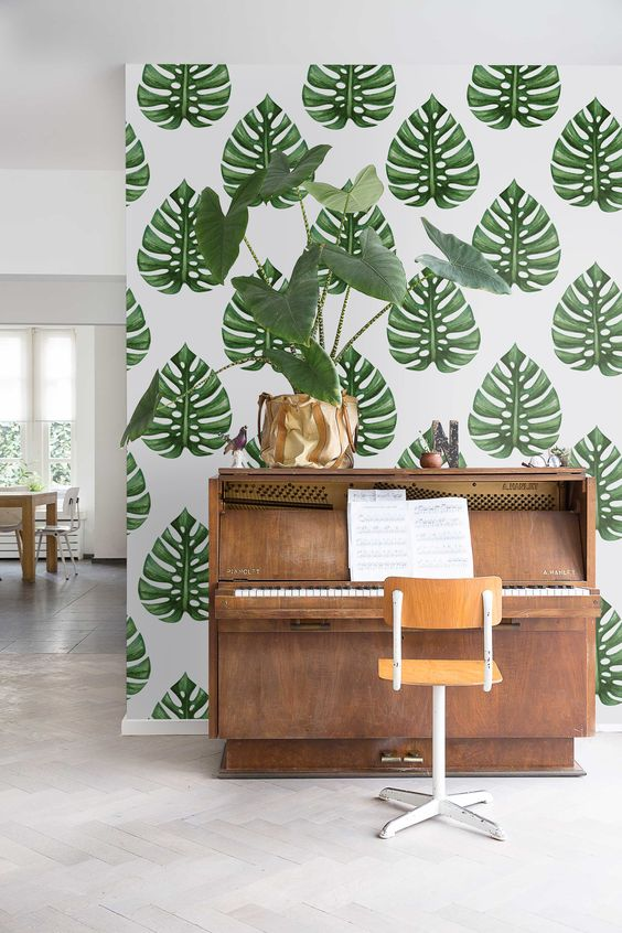 Monstera Deliciosa Removable Wallpaper -