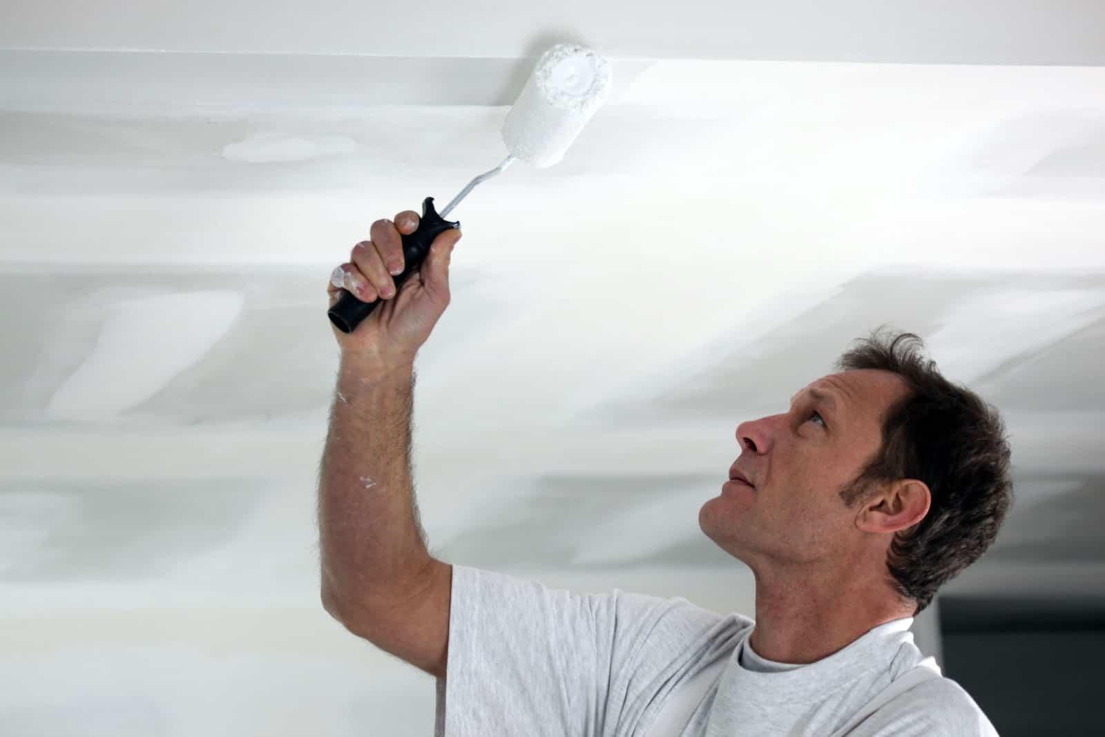 7 Best Ceiling Paints of 2021