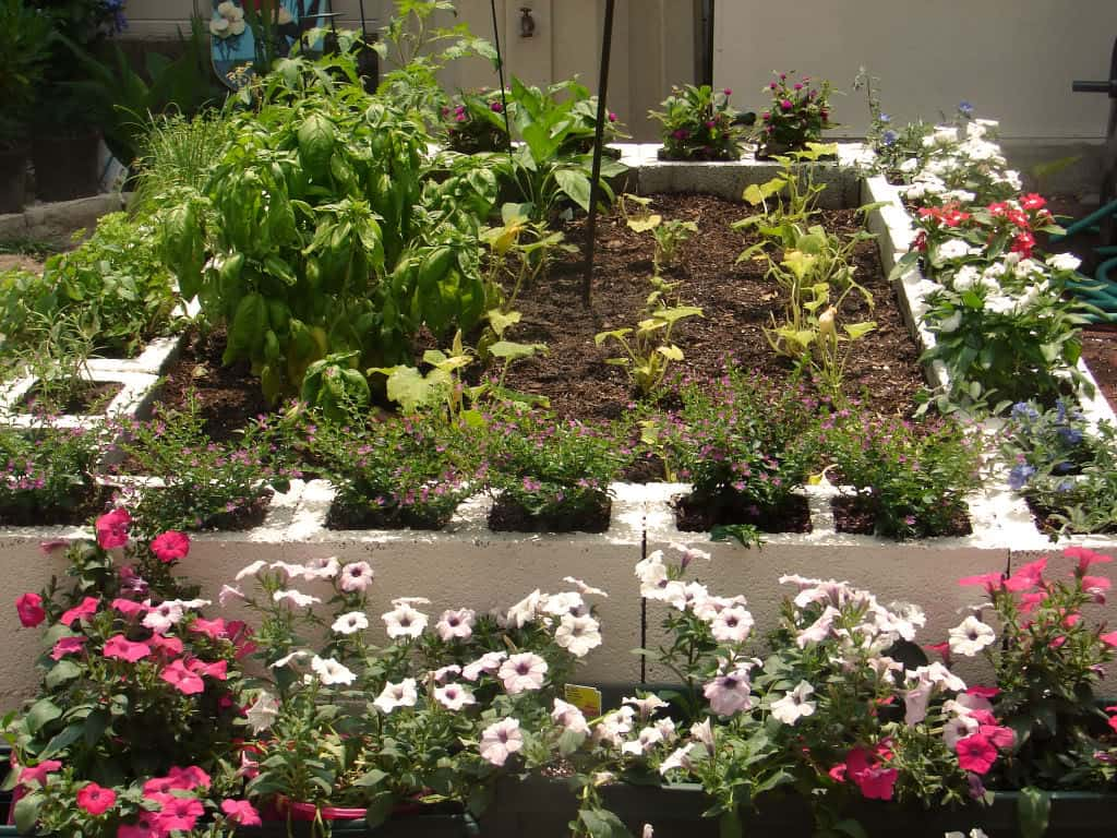 Use Cinder Blocks as Planters for Your Edging