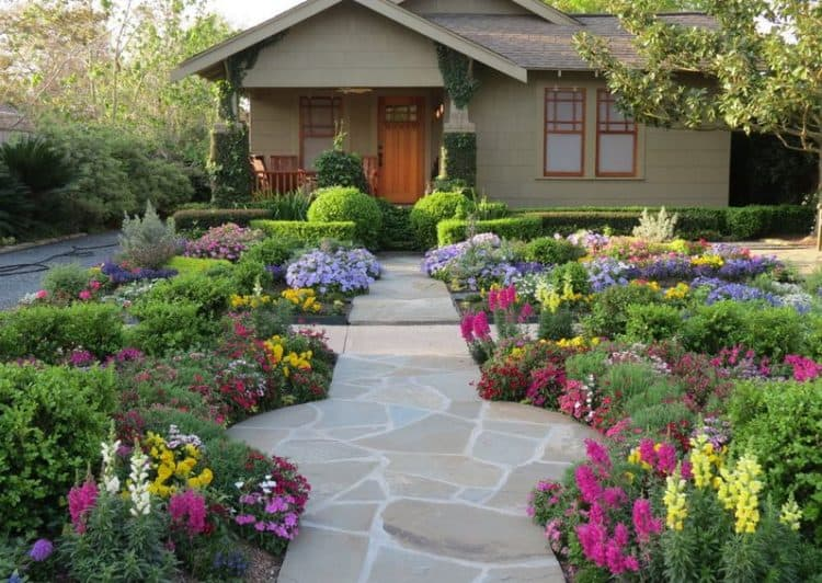 Plant a Sea of Flowers Across Your Lawn
