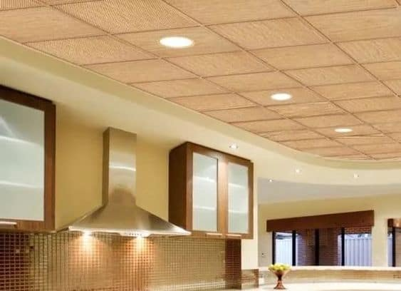 Go Through an Assortment of PVC Ceiling Choices