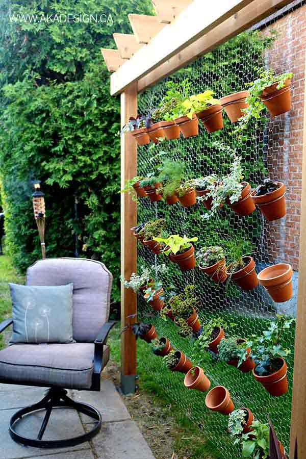 Add Chicken Wire and Plants to a Pergola