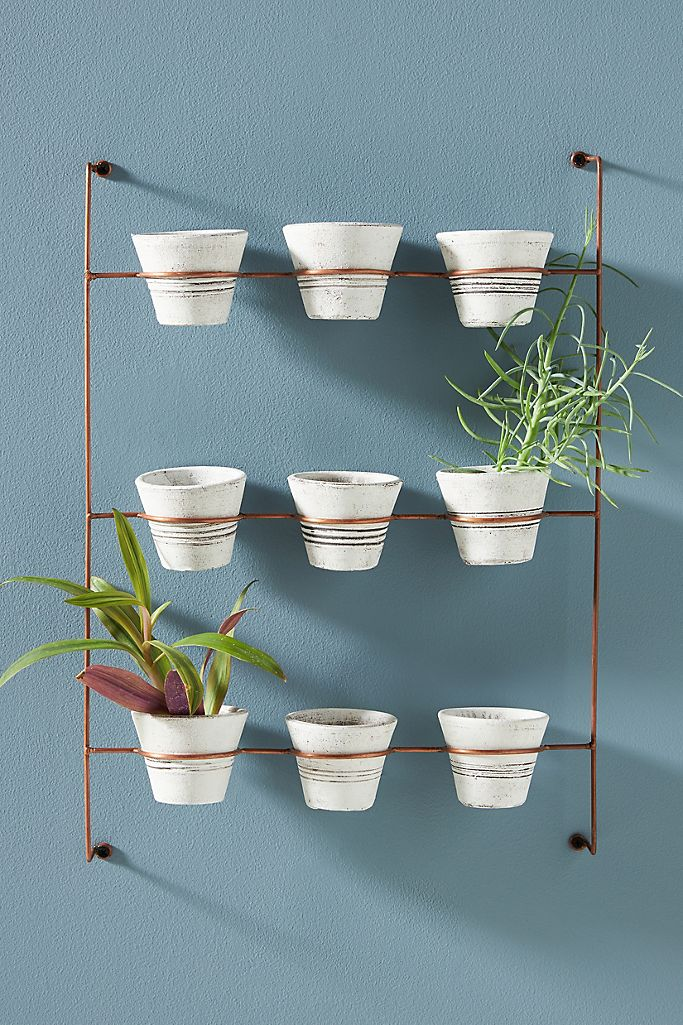 Hang Some Potted Plants
