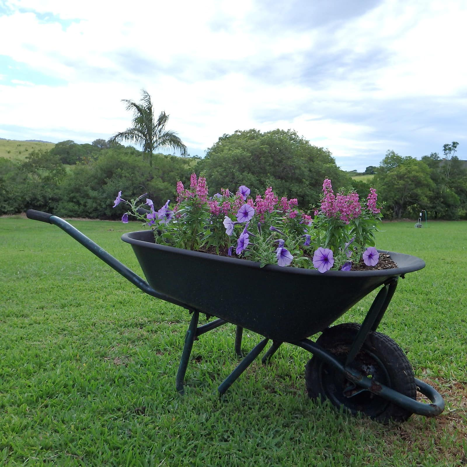 <strong>Install a Rustic Chic Wheelbarrow</strong>