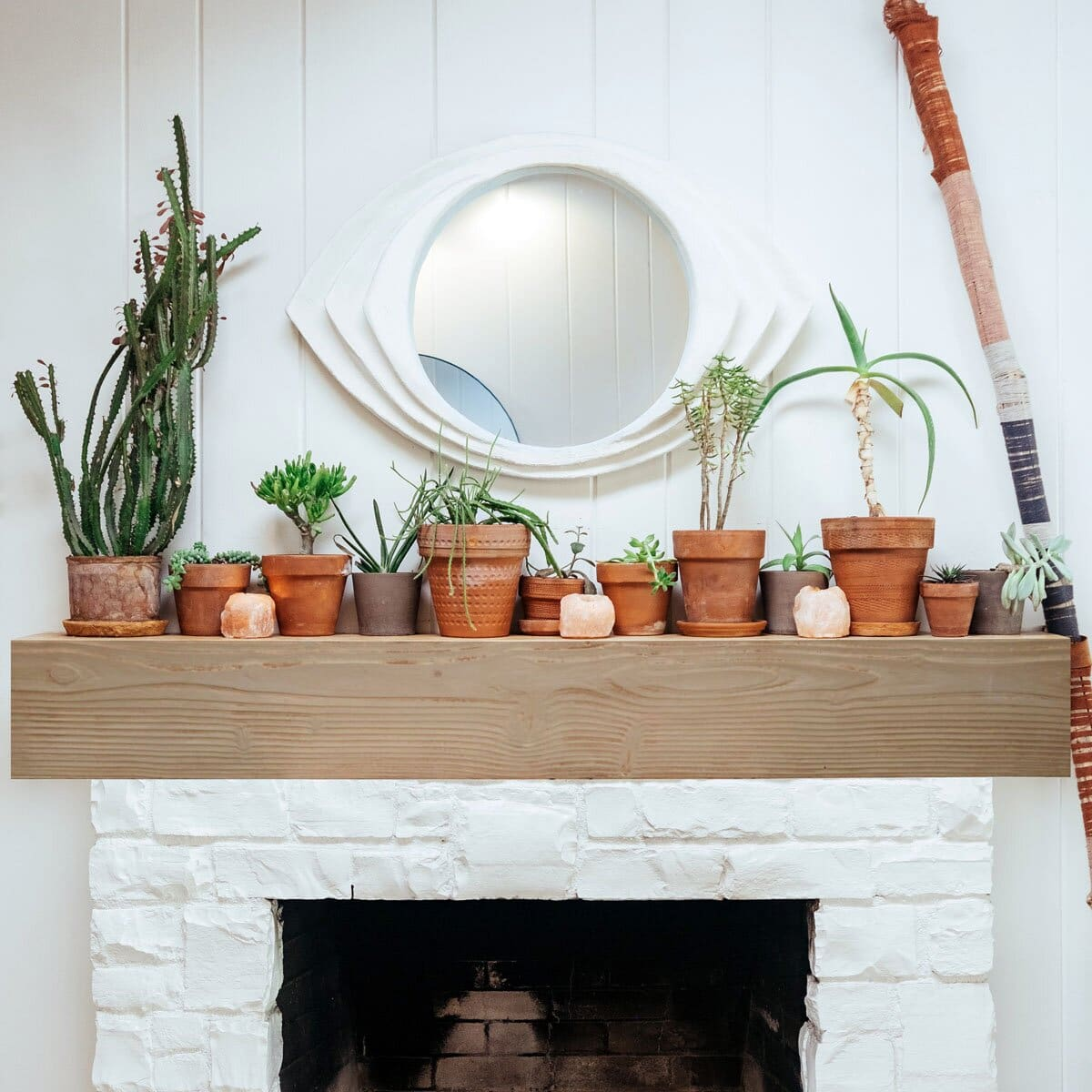 Decorate With Terracotta Potted Plants and Succulents